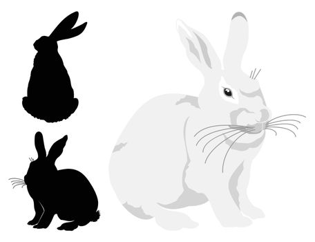 White hare and two silhouettes. A vector illustration