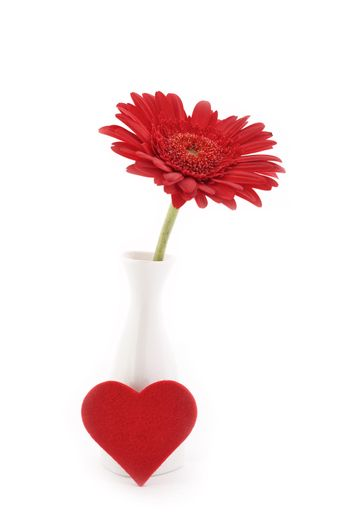 Flower in vase with heart