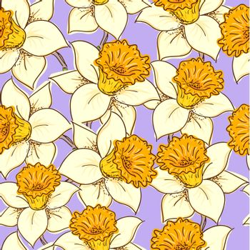 Seamless pattern with flowers daffodil (narcissus )