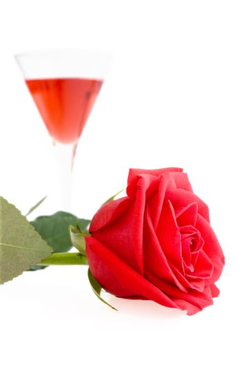 Gentle red rose and liquor