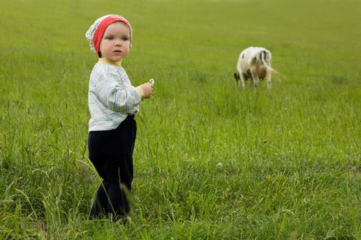 An image of a baby in the field
