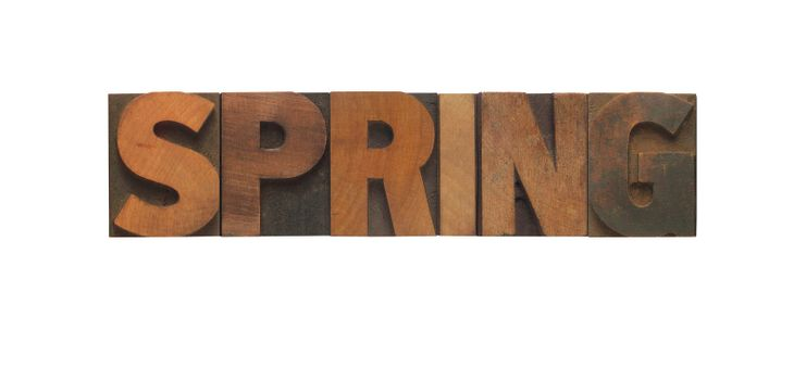the word spring in old wood type