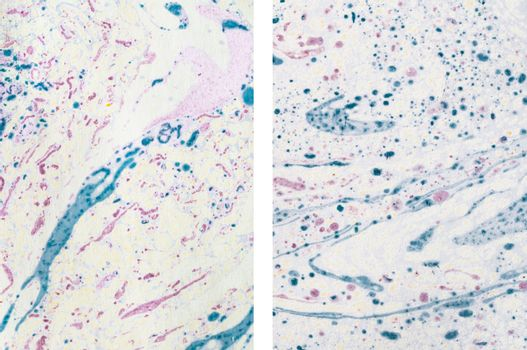 Abstract Marbled Paper Textures