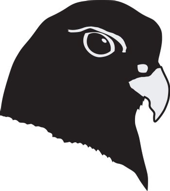 Illustration in style of black silhouette of gyrfalcon