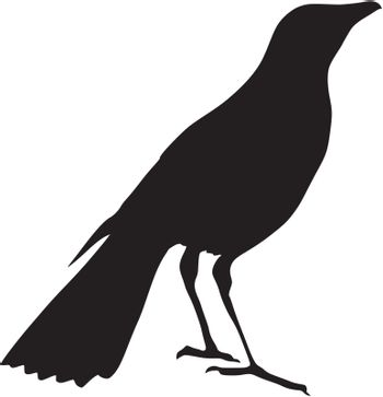 Illustration in style of black silhouette of thrush