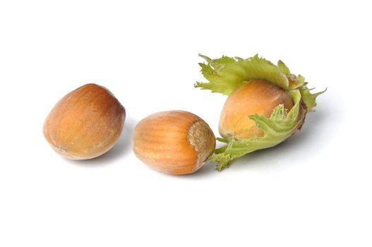 Macro of hazelnuts on white background