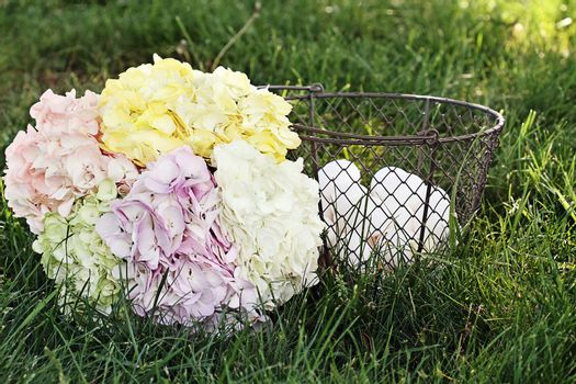 Pastel colored Hydrangeas with a basket of fresh organic eggs.