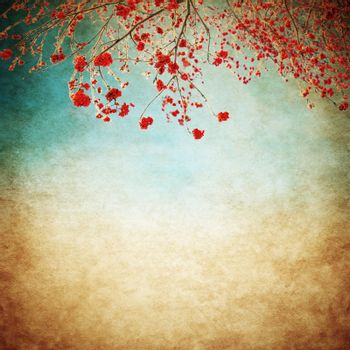 rowan berries bushes