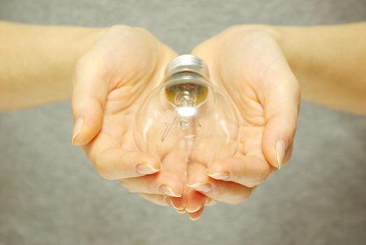 bulbin hands