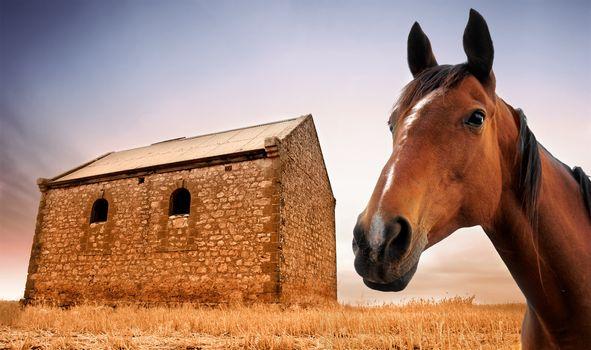 Rural Living II