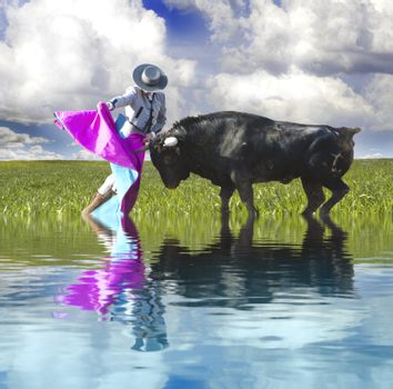 Spanish Bullfight with water reflection. Matador in Ring with Bu