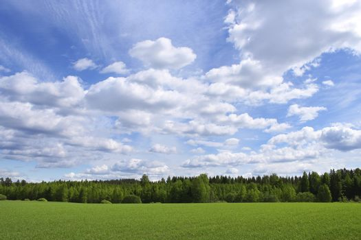 Countryside summer view with green fields blue sky white clouds