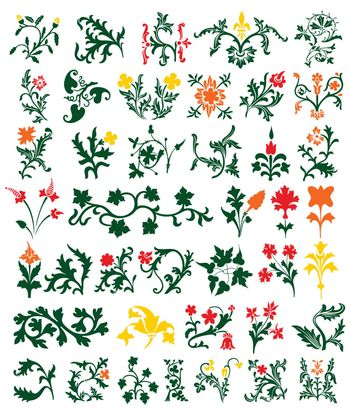 Natural ornament of Flowers and leaves. A vector illustration