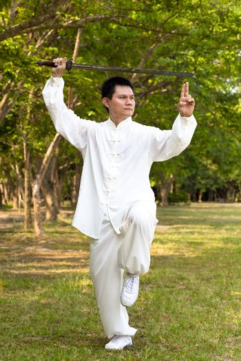 chinese kung fu with sword