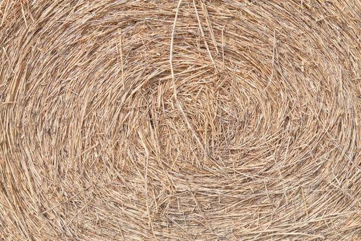 Swirly rice straw