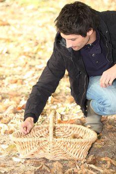 Man gathering chestnuts