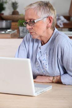 senior lady having on-line assistance