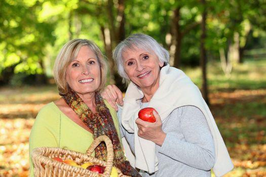 Women gathering apples