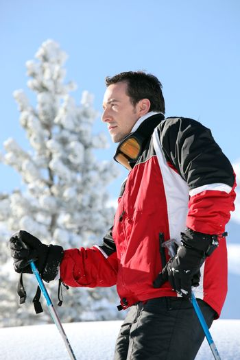 Skier looking at landscapes