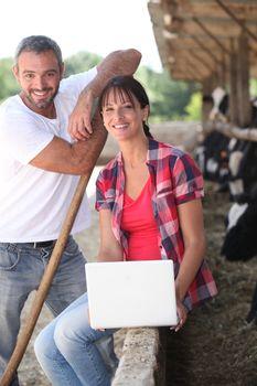 Livestock farm workers