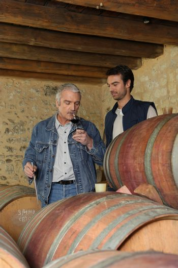 Winemakers in the cellar