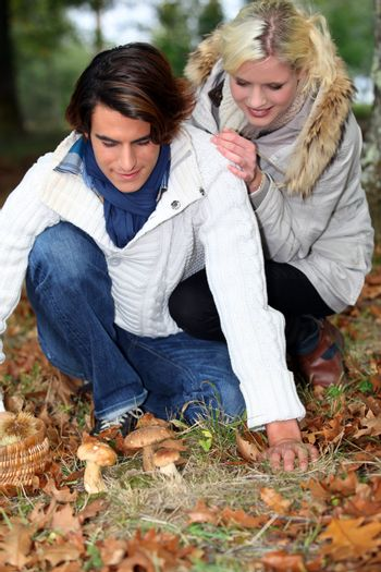 young couple in forest picking mushrooms