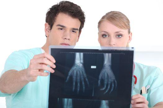medecine students examining a x-ray image
