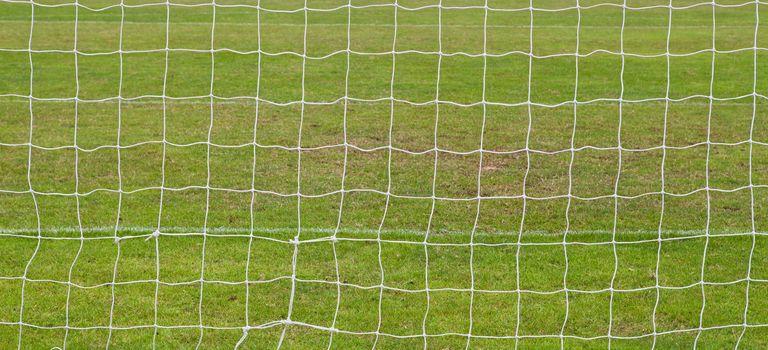 soccer net with green grass