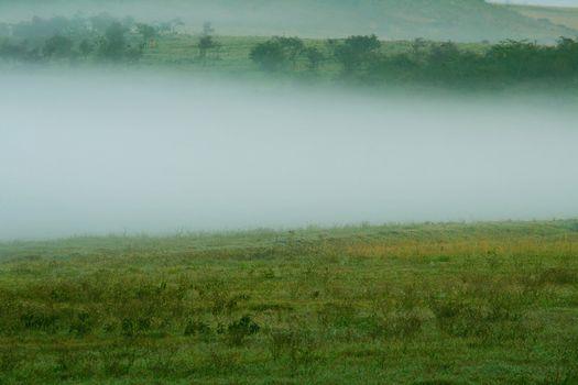 Overcast Landscape