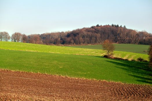 view with pastures and plowed field on the hills