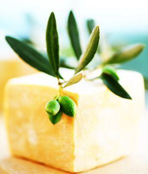 Olive soap bar