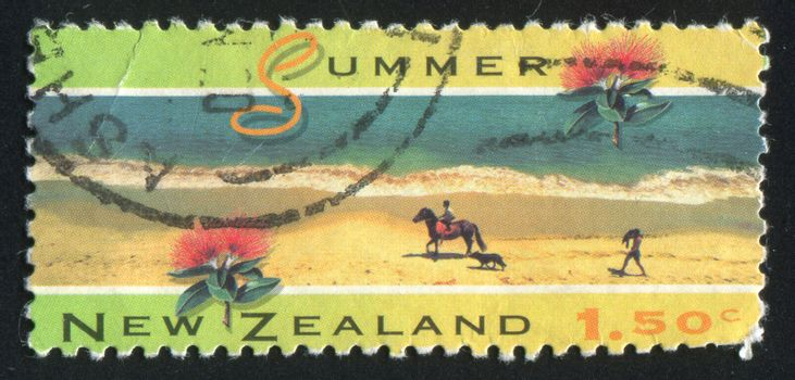 NEW ZEALAND - CIRCA 1994: stamp printed by New Zealand, shows Scenic Views of the Four Seasons, Summer, Opononi, pohutukawa flower, circa 1994