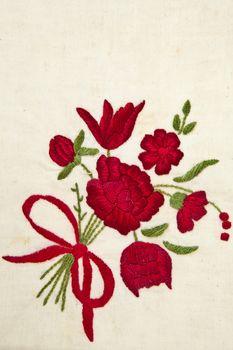 Cotton Rose on cotton background