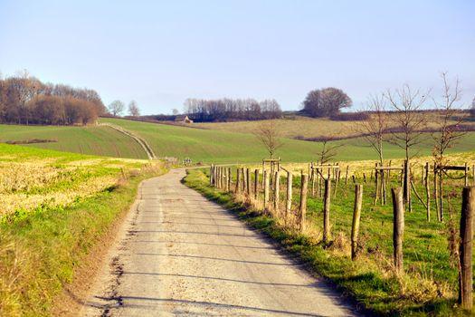 rural road in Limburg
