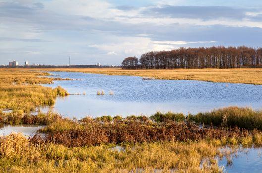 plain landscape with water