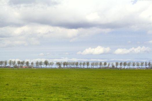 plain Dutch landscape