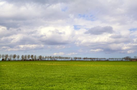 plain landscape in Groningen