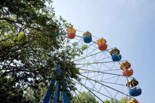 Popular attraction in park