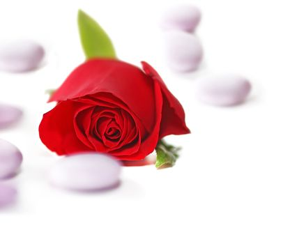 Red Rose with candy