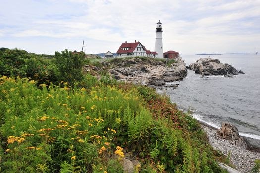 lighthouse with flowers