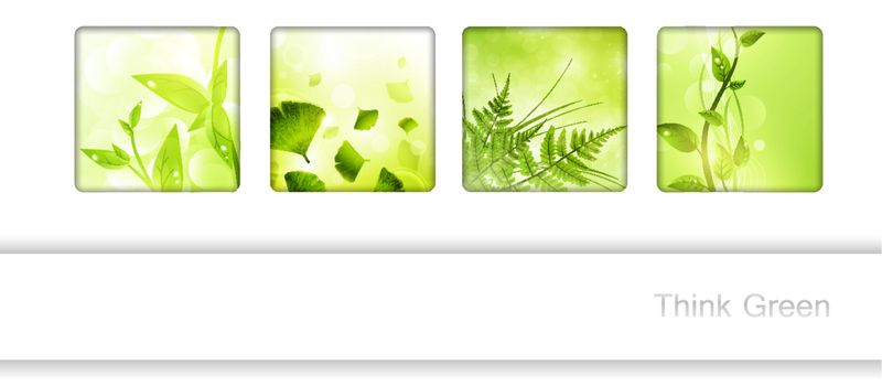 Eco frame collection with green leaves and copyspace for your text