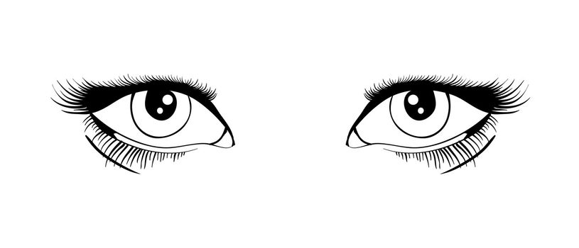 Beautiful female eyes black and white . Vector illustration EPS8
