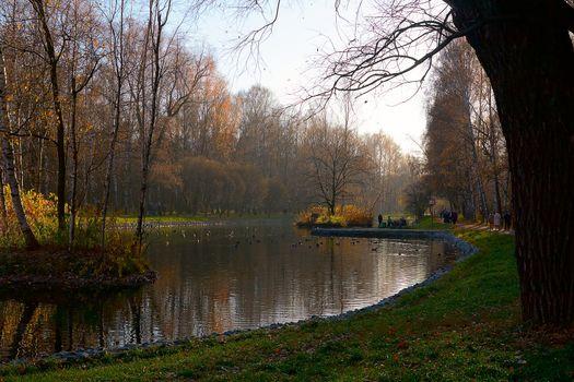 Putyaevskie ponds