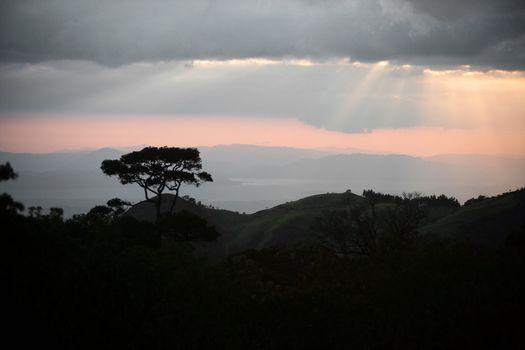 Idyllic Jungle and Mountains
