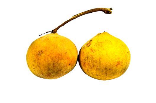 Santol fruit isolated on white background