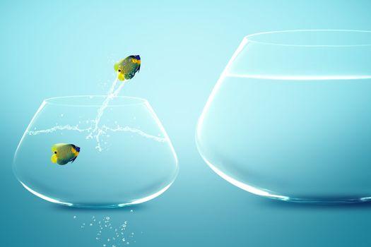Anglefish in small fishbowl watching goldfish jump into large fi