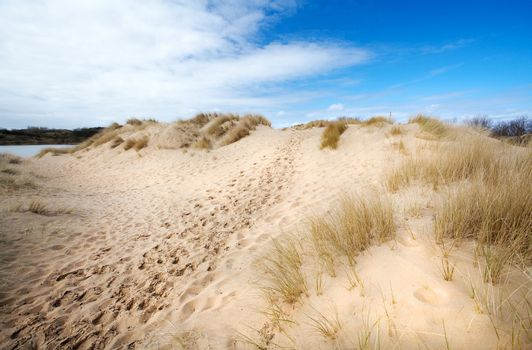 path in the dunes