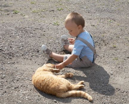 little boy plays with a cat in the afternoon