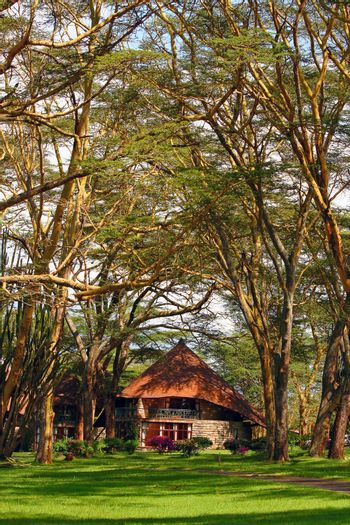 Tourist resort in a woods of Africa