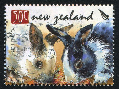 NEW ZEALAND - CIRCA 2008: stamp printed by New Zealand, shows Pocket Pets, Rabbits, circa 2008